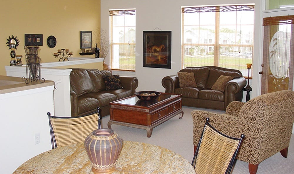 Well decorated living room at Springs at Greystone in Birmingham
