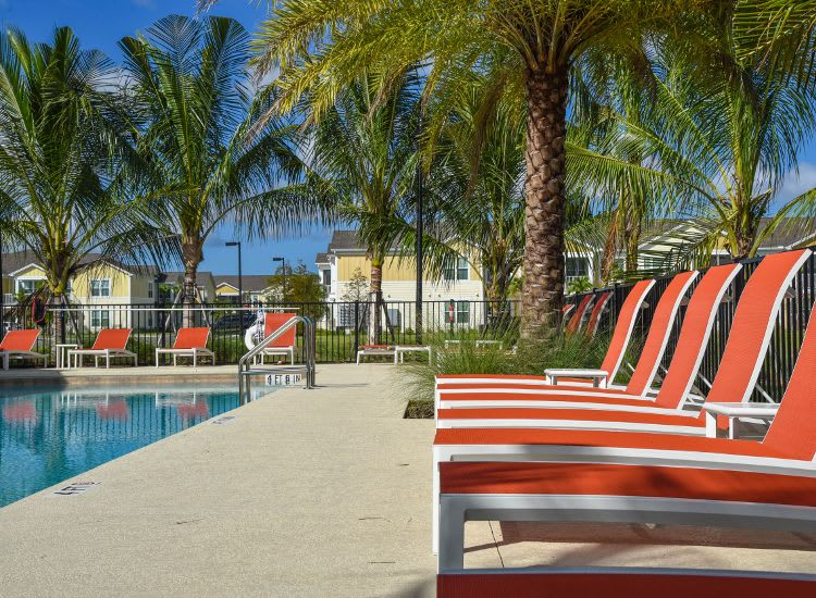 Clubhouse pool at Springs at Bee Ridge in Sarasota