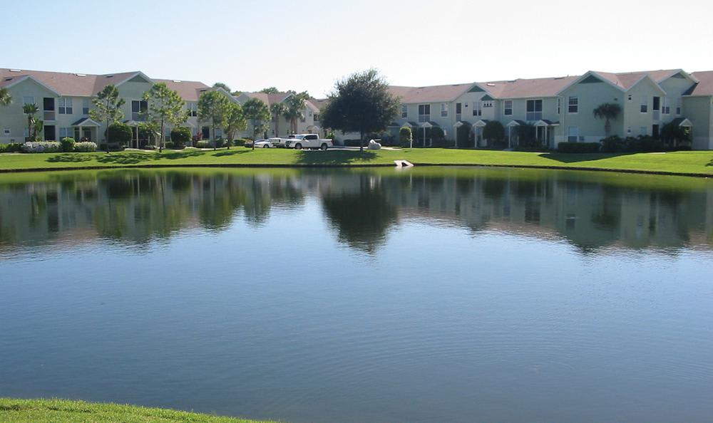 apartments view across the pond at Springs at Palma Sola in Bradenton, FL