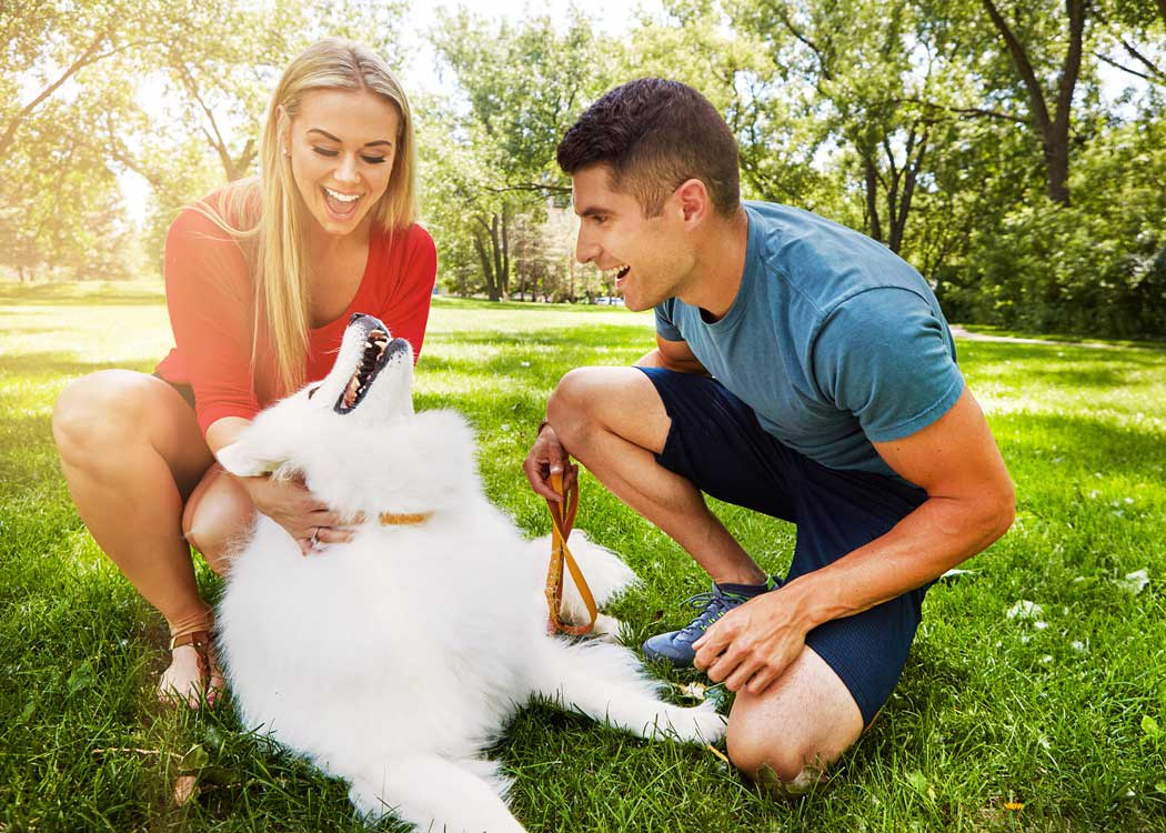 Couple plays with their fluffy white dog near Addison Keller Springs in Addison