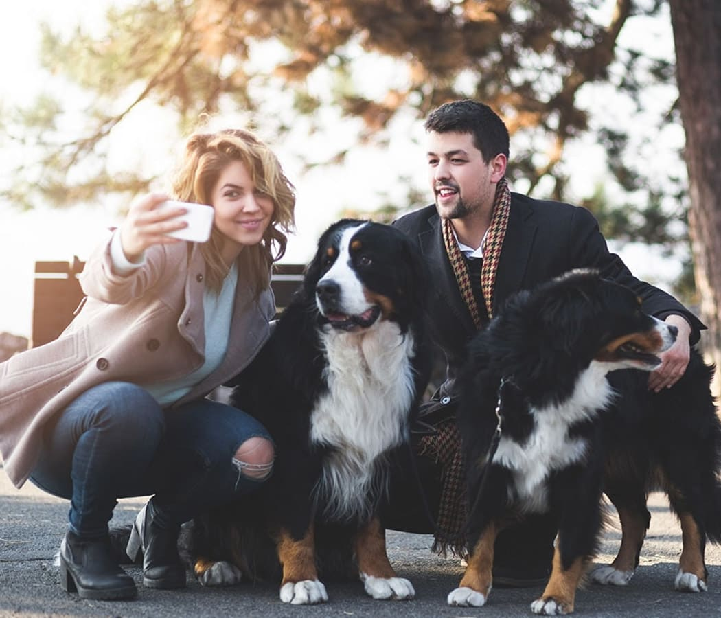 Resident couple and their dogs at Hamptons Apartments in Puyallup, Washington