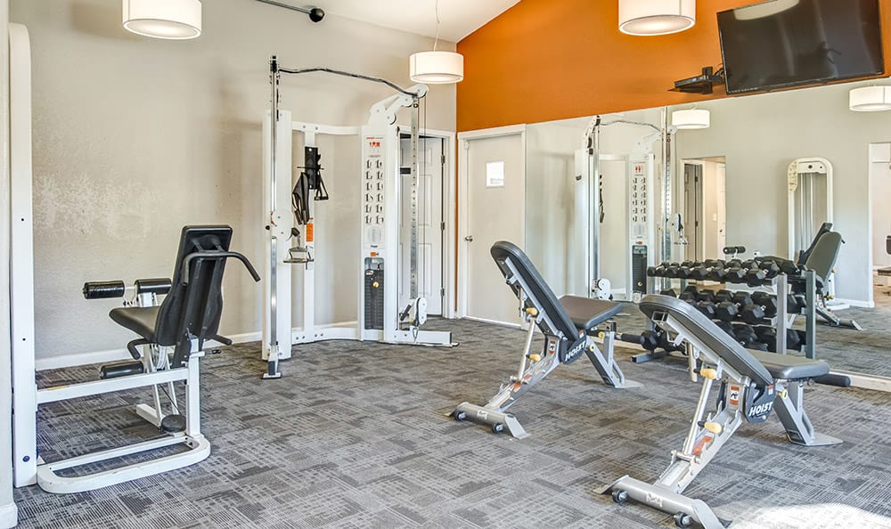 Fully equipped fitness center at Aventerra at Dobson Ranch in Mesa