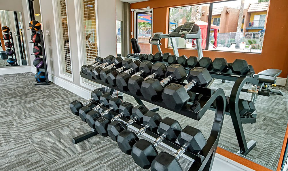 The fitness center at Villetta Apartments in Mesa has plenty of free weights