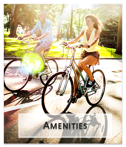 Discover our Amenities