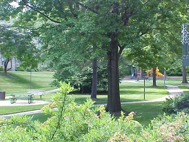 Rock Creek Terrace park and picnic area