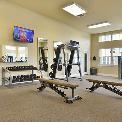 Use one of two on-site fitness studios at Lola Apartments in Riverview, Florida