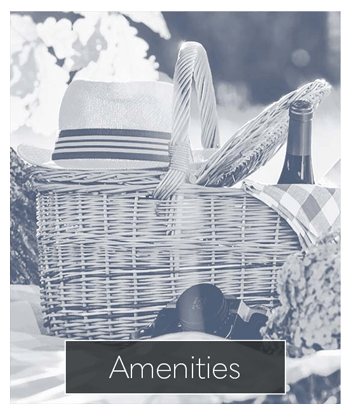 See what kind of amenities North Ponds Apartments has