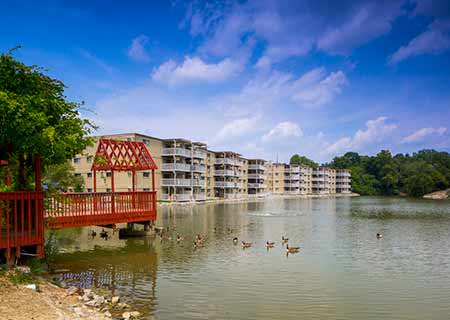 Nearby Community Lakeshore Drive Apartments
