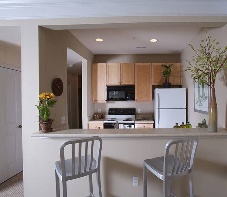 Modern kitchen at Worthington Luxury Apartments