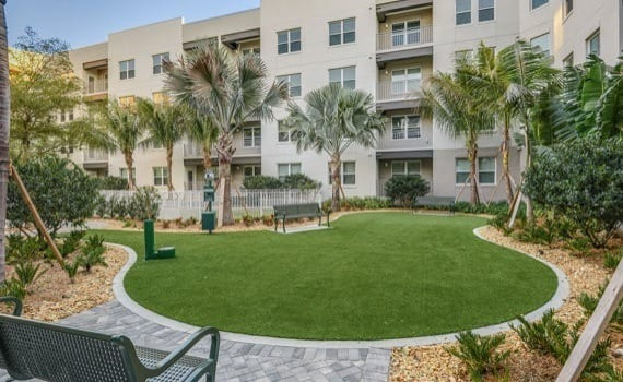 Pet Friendly at apartments in Sarasota
