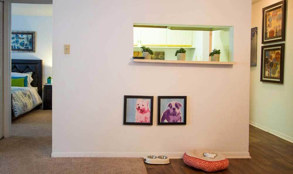 Pet friendly apartments in Hazelwood