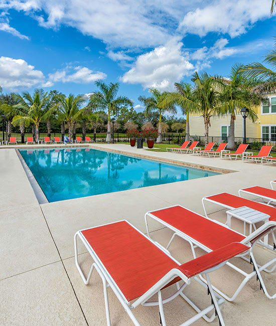 Discover the amenities at Polo Village