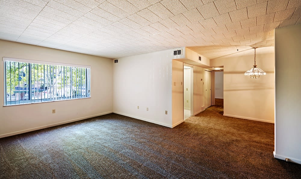 Open floor plan space at Avalon Arms Apartments in Avalon