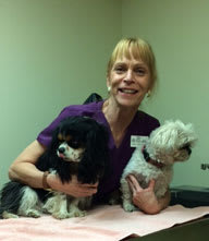 Team member Katherine at Cedarwood Veterinary Clinic