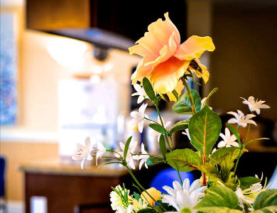 Decorate your apartment in your style at Pacifica Senior Living Millcreek