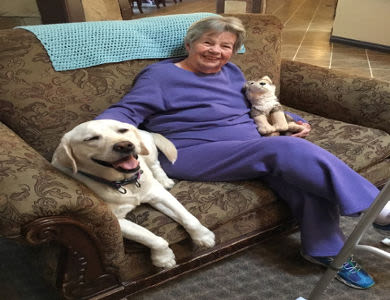 Residents doing a Pet Therapy at Courtyard at Coeur d'Alene
