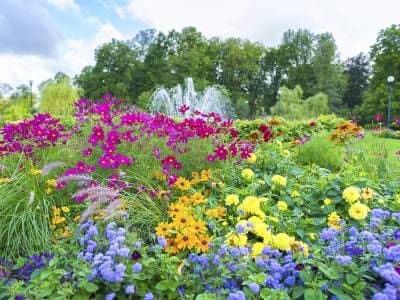 Beautiful garden at Park Guilderland Apartments in Guilderland Center, NY