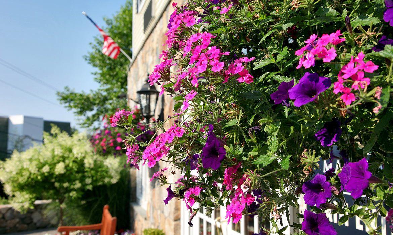 Photos at Maplewood at Danbury in Danbury, Connecticut