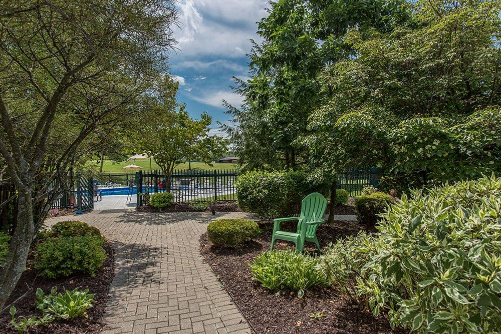 Beautiful Nature at swimming pool at Steeplechase Apartments in Camillus, New York