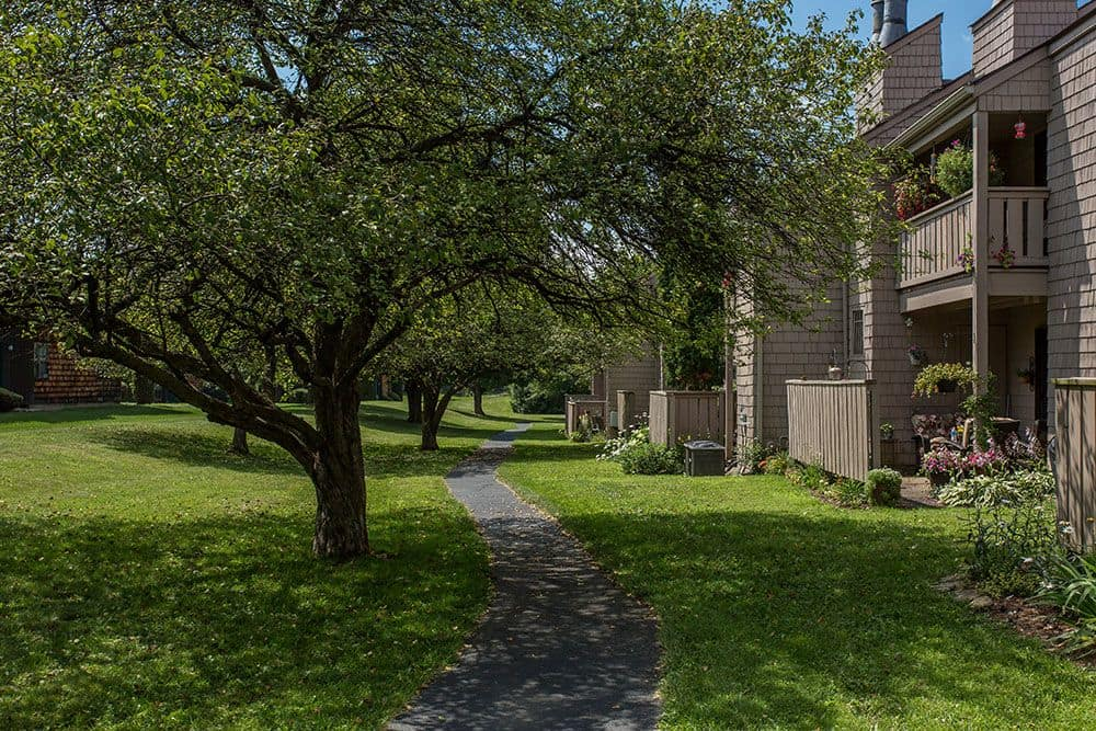 Walking paths at apartments in Camillus, New York