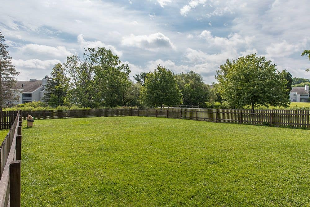 Dog park at apartments in Syracuse, New York