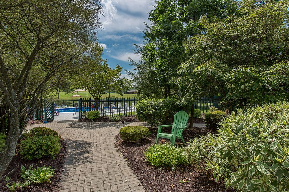 Poolside at Steeplechase Apartments in Camillus