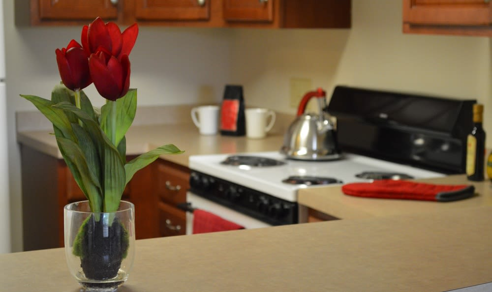 Kitchen view at Greenwood Cove Apartments home in Rochester, NY