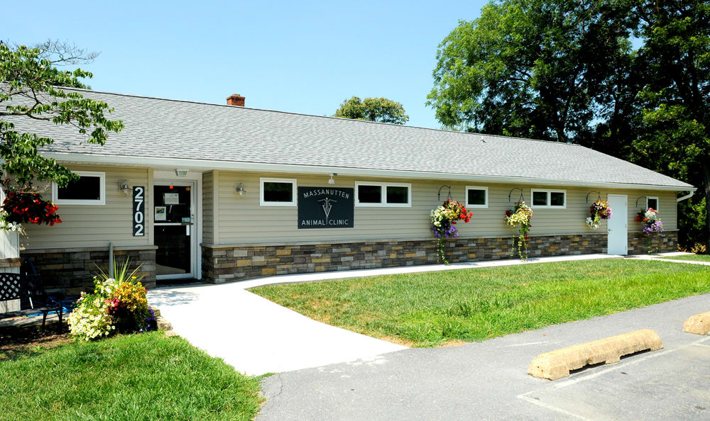 Exterior Side Shot Of Massanutten Animal Clinic In Harrisonburg