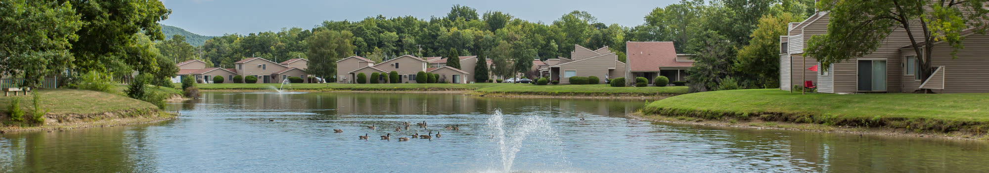Emerald Springs Apartments offers a great neighborhood to its residents