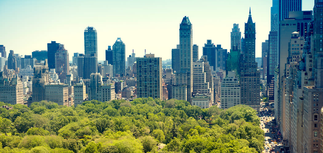 Beautiful NYC skyline views from The Harper at Harmon Meadow