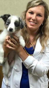 Dr Kaitlin Kucera in Des Moines