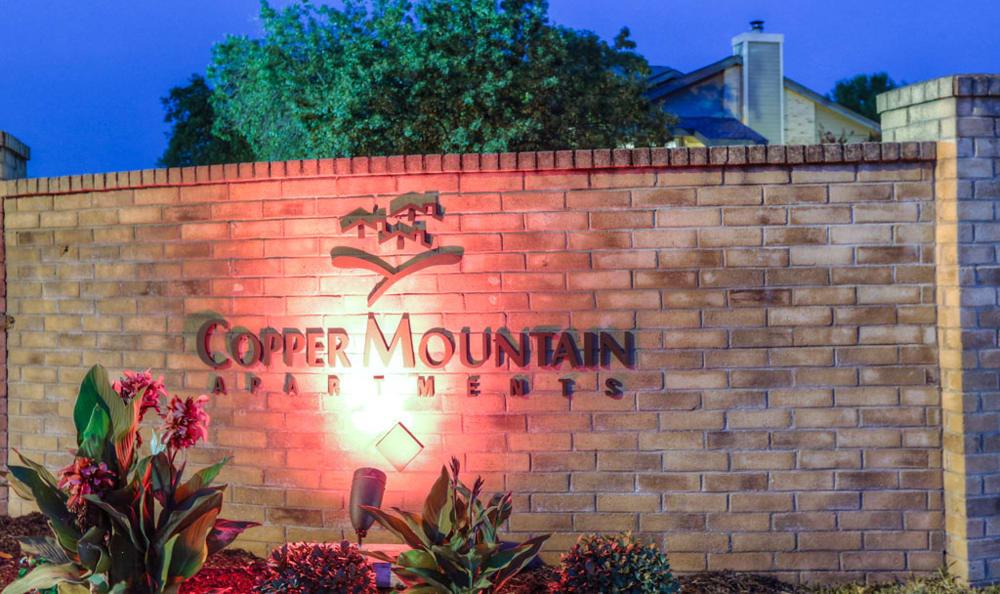 Pet Friendly Sky Views at Copper Mountain