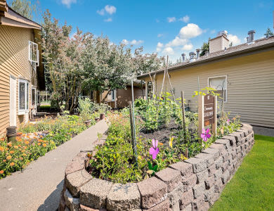 Beautiful gardens of a house at Pacifica Senior Living Lynnwood