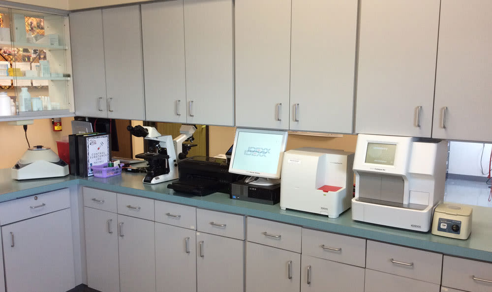Lab area at All City Pet Care East in Sioux Falls, SD