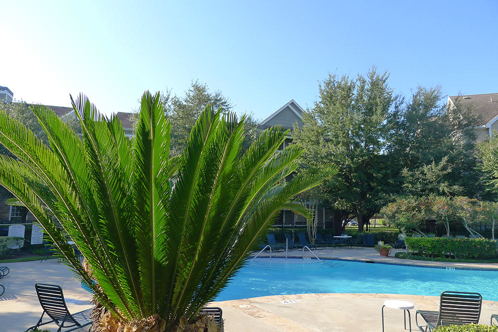 Lodge at West Oaks pool