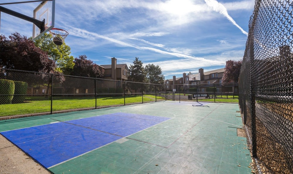 Sports Court at Renaissance at 29th Apartments