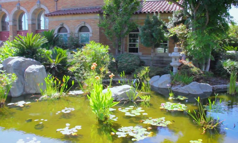Gardens and aquarium Sakura Gardens