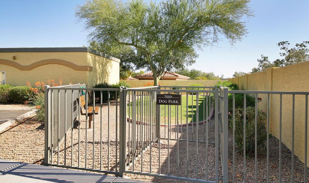Dog park at Tresa at Arrowhead Apartments in Glendale