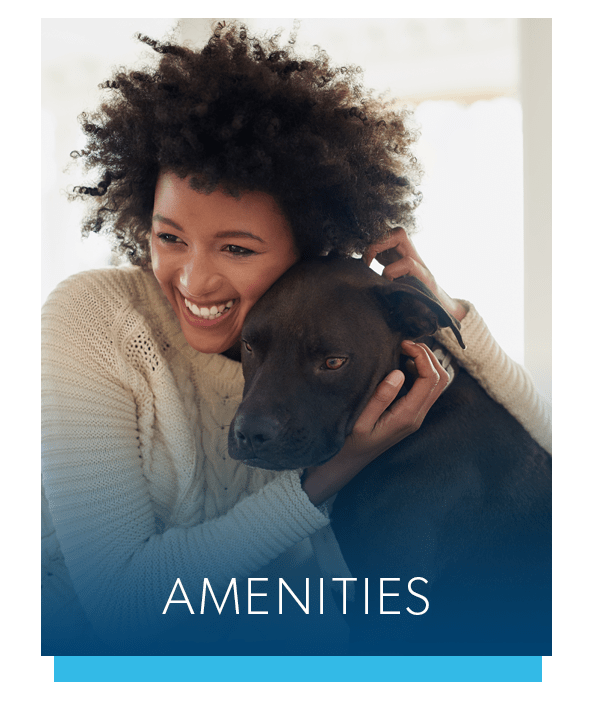 Amenities at Lakeview Terrace Apartment Homes