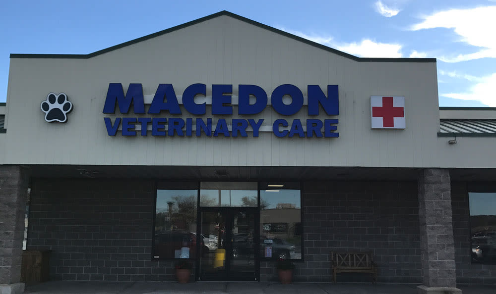 Macedon Veterinary Care store front in Macedon