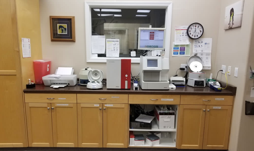 Lab equipment at Arroyo Grande Animal Hospital