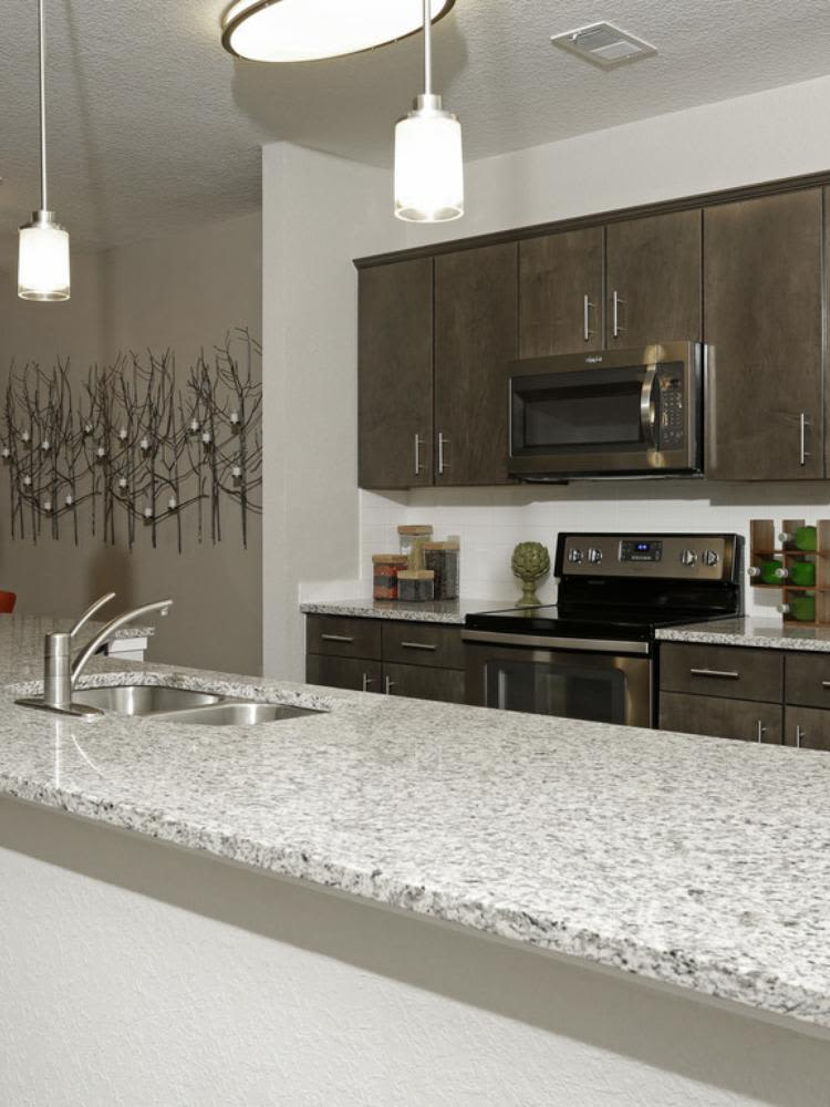 Beautiful kitchen at Arbours at Crown Point in Ocoee, Florida