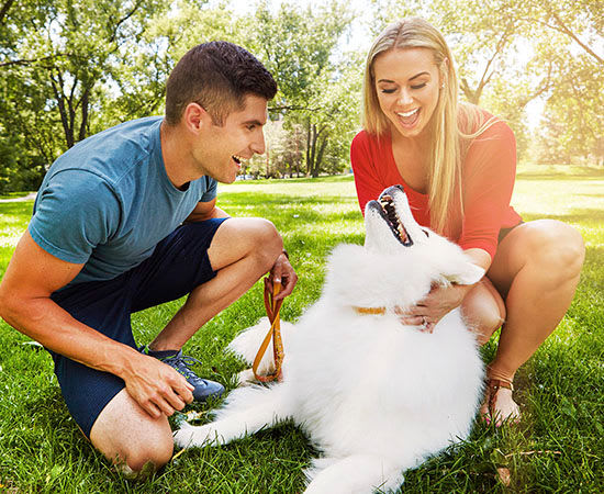 Man and woman play with dog near Orlando