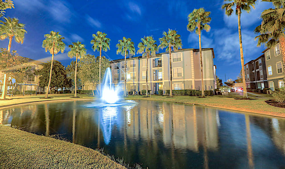 The palms pond at Palms at Clear Lake