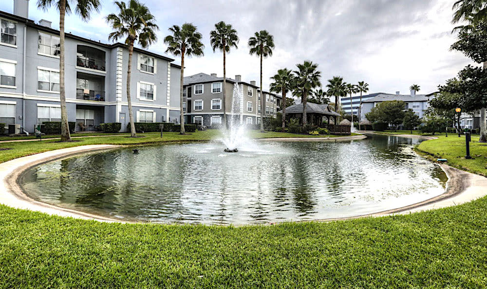 Pond with fountain at Palms at Clear Lake