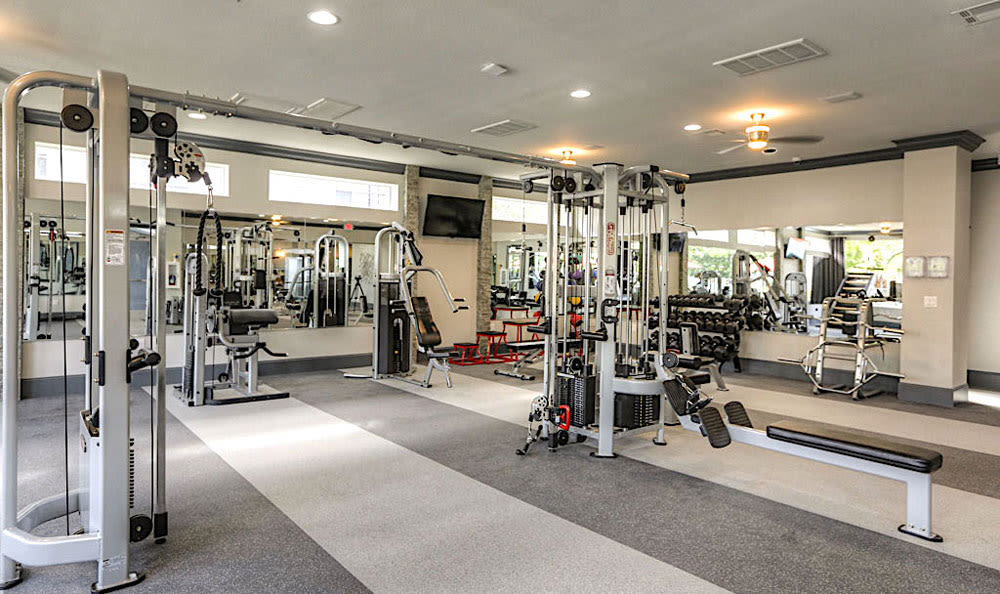 Fitness center at Palms at Clear Lake