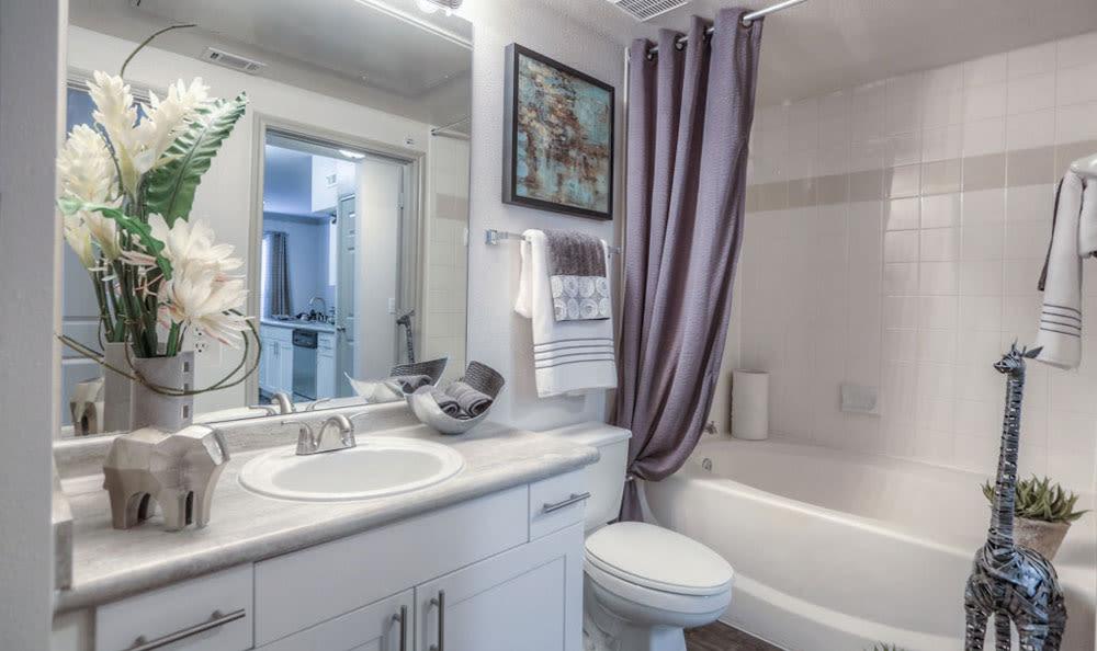 Bathroom at Palms at Clear Lake