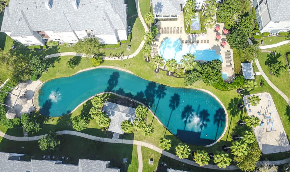 Pet friendly sky views at Palms at Clear Lake