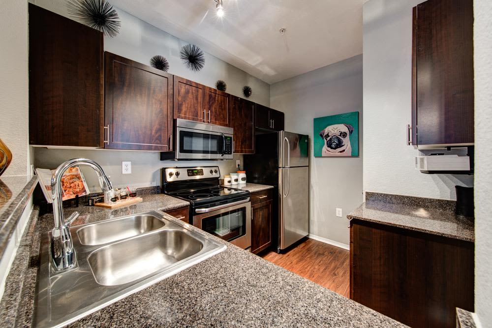 An example kitchen at the apartments for rent in Dallas, TX