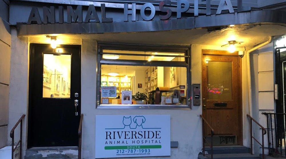Hospital Entrance at Riverside Animal Hospital South in New York